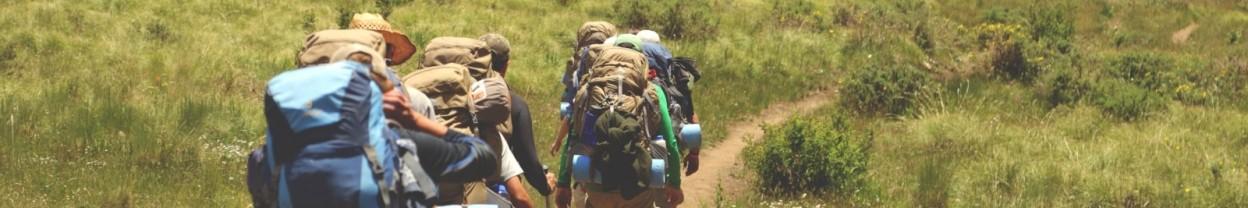 תיקים ומזוודות - טיולים - המקום של לירון