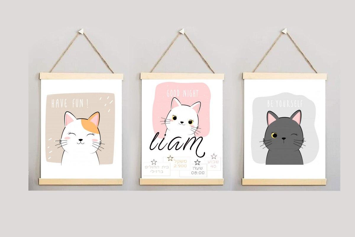 דגם חתולים - תעודת לידה