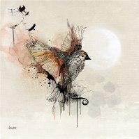 ציור של ציפורי אהבה