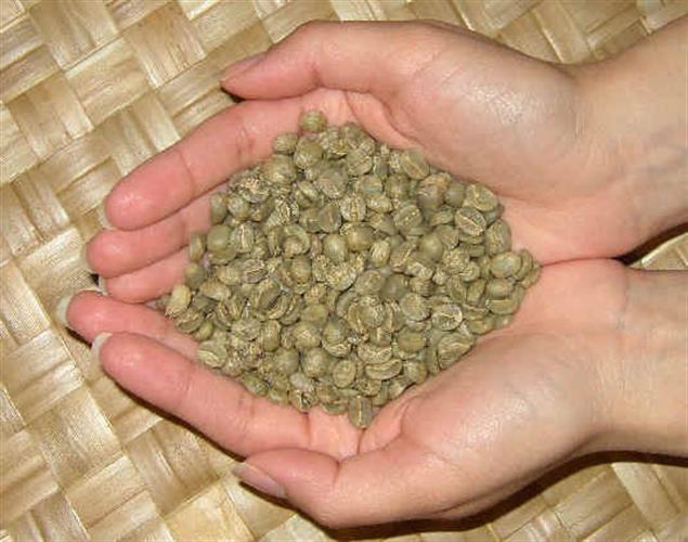קפה ירוק אתיופיה סידמו - Ethiopia Sidamo