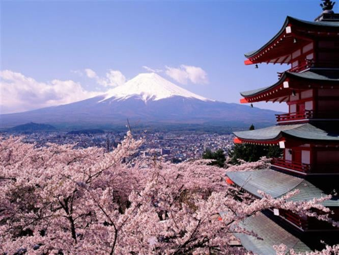 יפן בשלכת ובאביב מסע מרתק