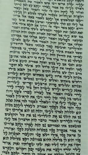 ספר תורה אשכנזי מהודר