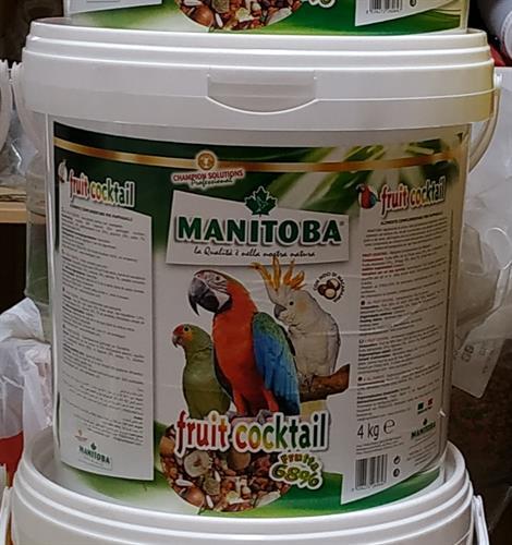 פרוט קוקטל MANITOBA מכיל 68% פירות אריזה 4 קג בדלי
