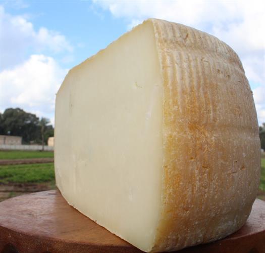 גבינה בסגנון קשקבל