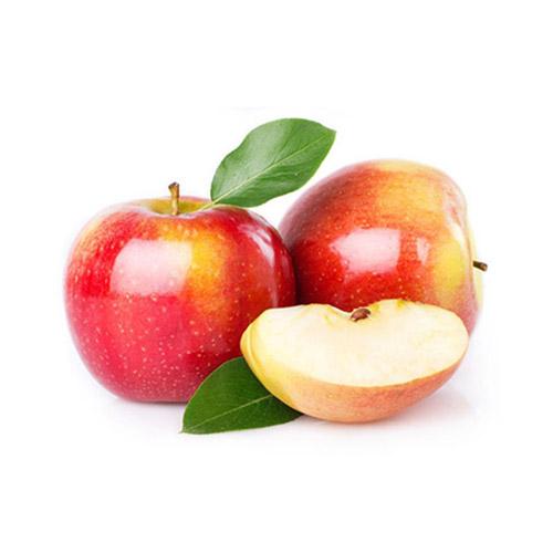 תפוח עץ פינק ליידי