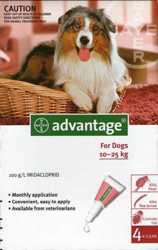 """אמפולות אדוונטג' 250 לכלב (10-25 ק""""ג)"""