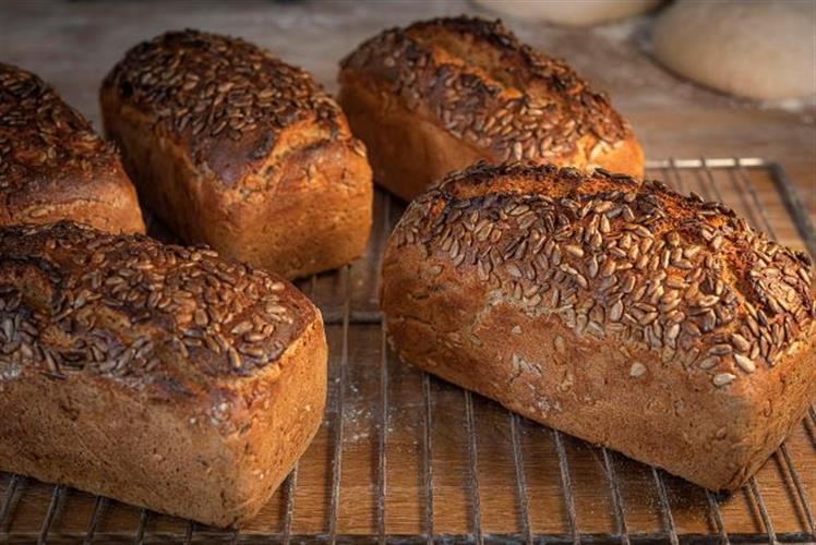 לחם מחמצת משיפון מלא עם גרעיני חמניה