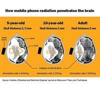 מפחית את קרינת הטלפון משמעותית - 6 יחידות בחבילה
