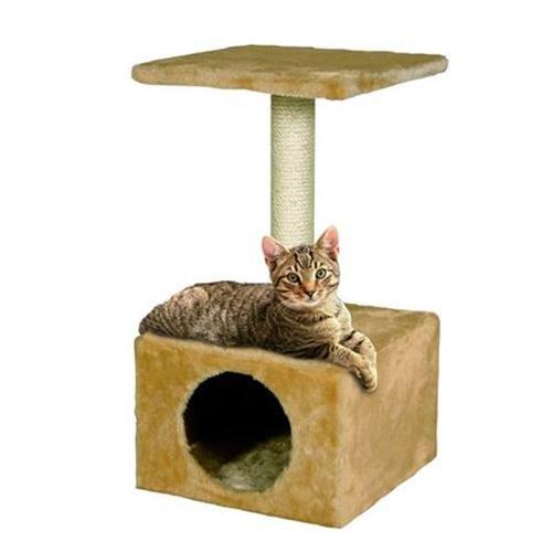 בית עם עמוד גירוד לחתול
