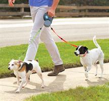 רצועה ל - 2 כלבים