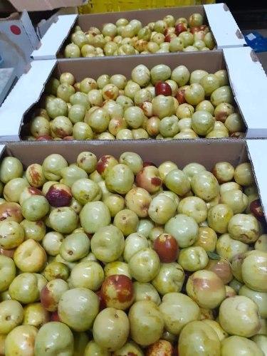 פרי עץ הדומים 750 גרם