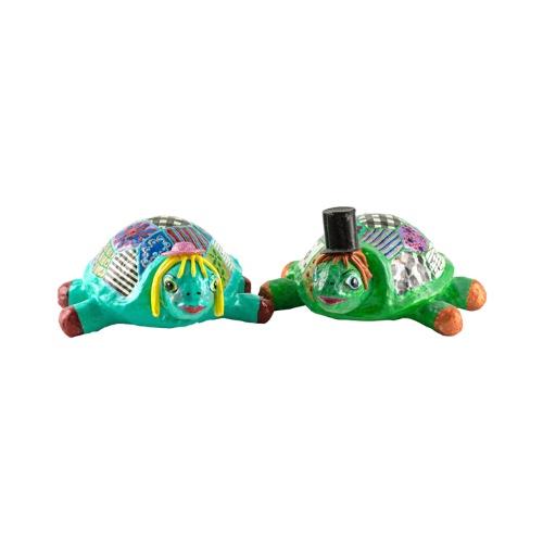 זוג צבים