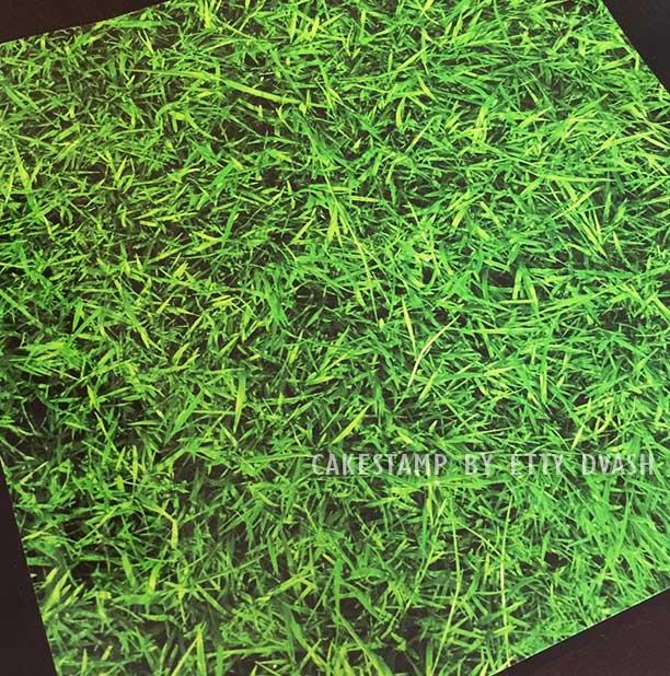 5 יחידות דשא חי - טפט מצופה למינציה