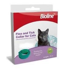 קולר פרעושים לחתולים - BIOLINE
