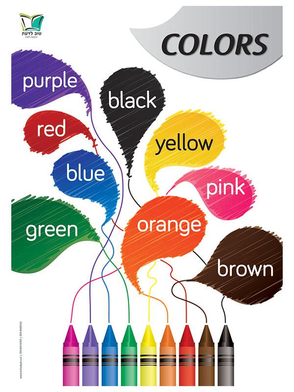 *פריט עודפים* פוסטר צבעים באנגלית | Color Poster