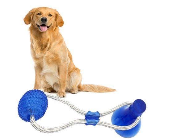 צעצוע מיוחד לכלב - משחק משיכה