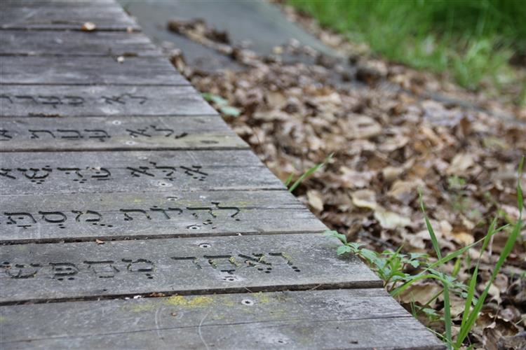 מילים בדרך הביתה - סדנת כתיבה בהנחיית חגית אלמקייס עם האורחת צילה זן בר צור