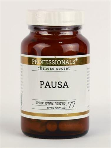 פאוזה - PAUZA
