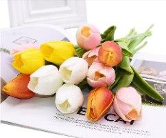 מארז פרחי טוליפ בצבעים