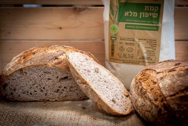 לחם מחמצת משיפון מלא עם אגוזי מלך