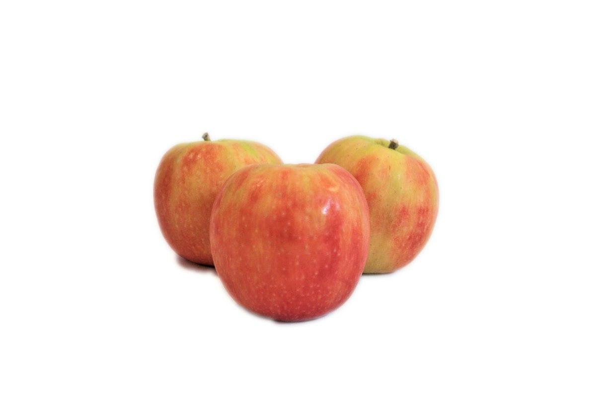 תפוח גאלה