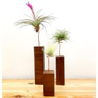 שלישיית פמוטים מעץ אגוז