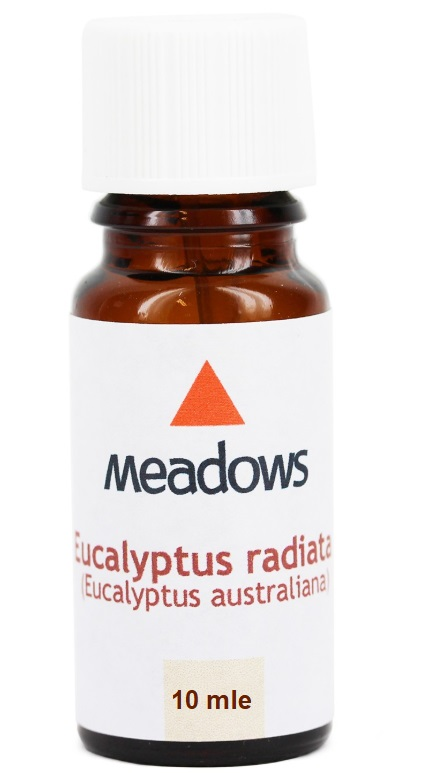 "שמן ארומתרפי אקליפטוס רדיאטה 10 מ""ל- Eucalyptus Radiata Essential Oil 10cc"