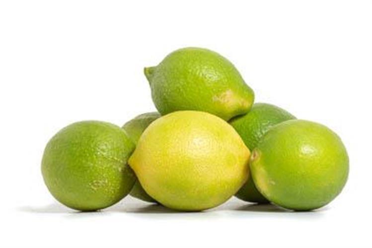 """לימון קיץ ירוק 1.3 ק""""ג"""