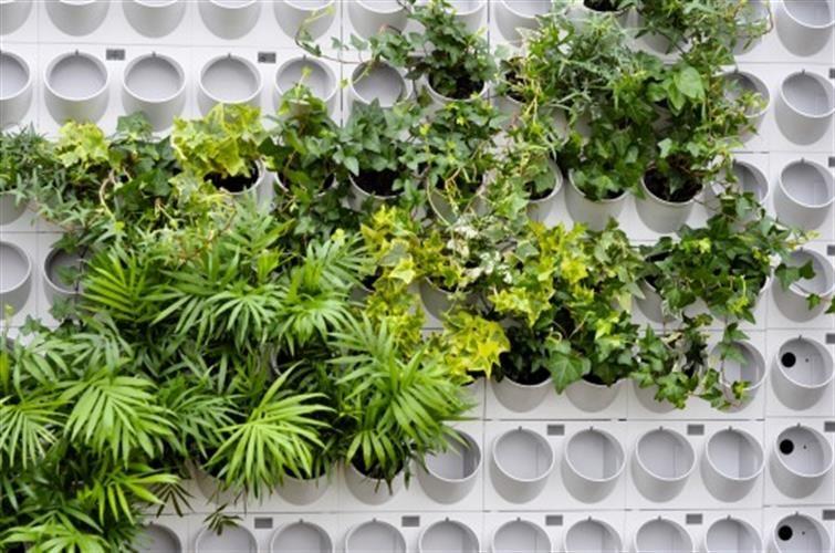 """מערכת הידרו קיר ירוק חצי מטר מרובע פיקסל גארדן 14 ס""""מ PIXEL GARDEN"""