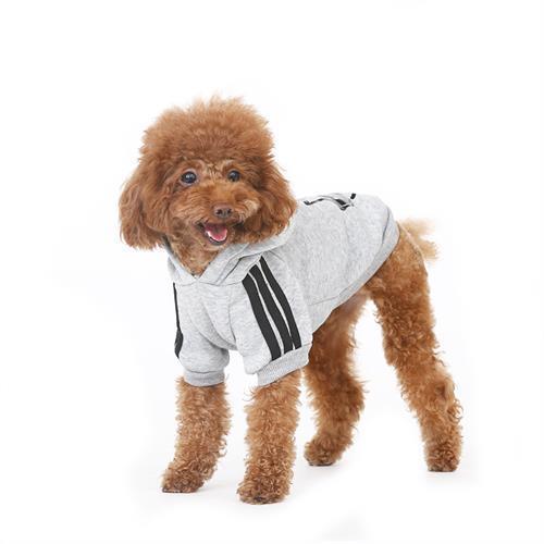 פוטר לכלב צבע אפור
