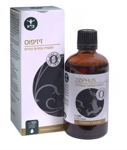 זיזיפוס - Ziziphus