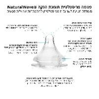 זוג בקבוקי האכלה זכוכית