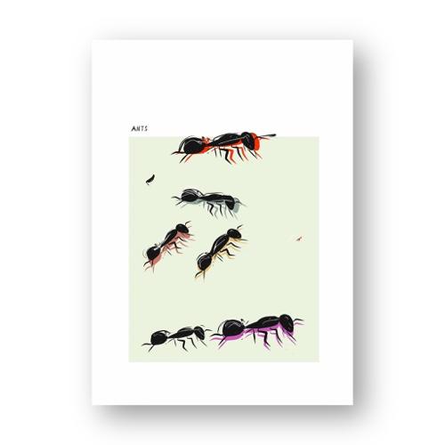נמלים