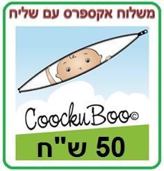 משלוח בשירות מהיר אקספרס בארץ (דואר ישראל)