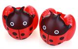 אדום - מצופים לילדים בצורת חיפושית