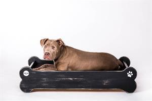 מיטה לכלב - על העצם L