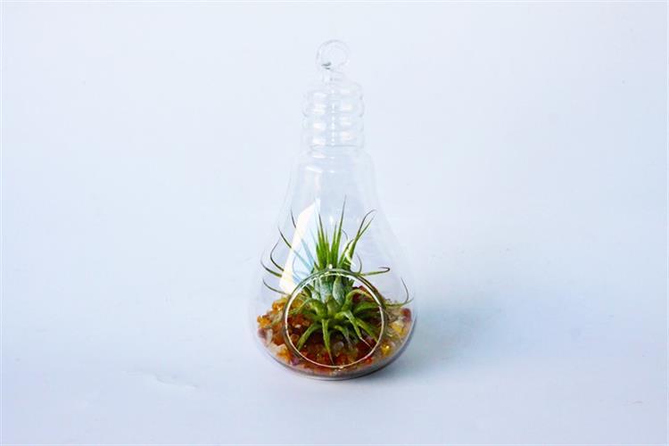 מנורת קריסטל- קטן