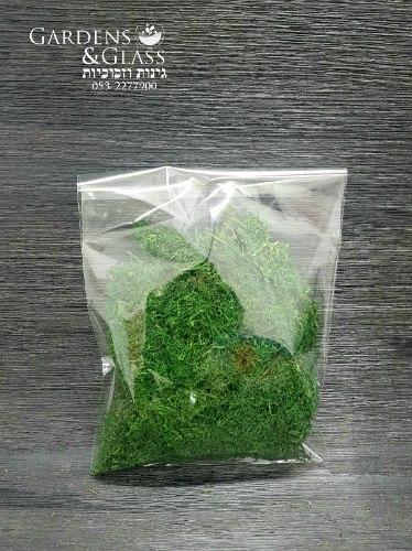 מוס ירוק ליצירה