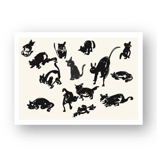 חתולים #1