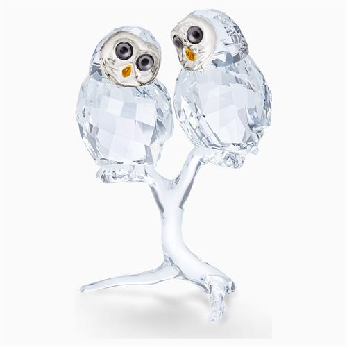 קריסטל SWAROVSKI  OWL COUPLE