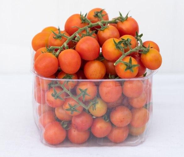 """עגבניות שרי 1.3 ק""""ג"""