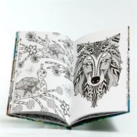 ספר צביעה - הקסם שבטבע