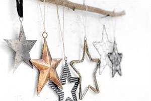 ענף עם 6 כוכבים
