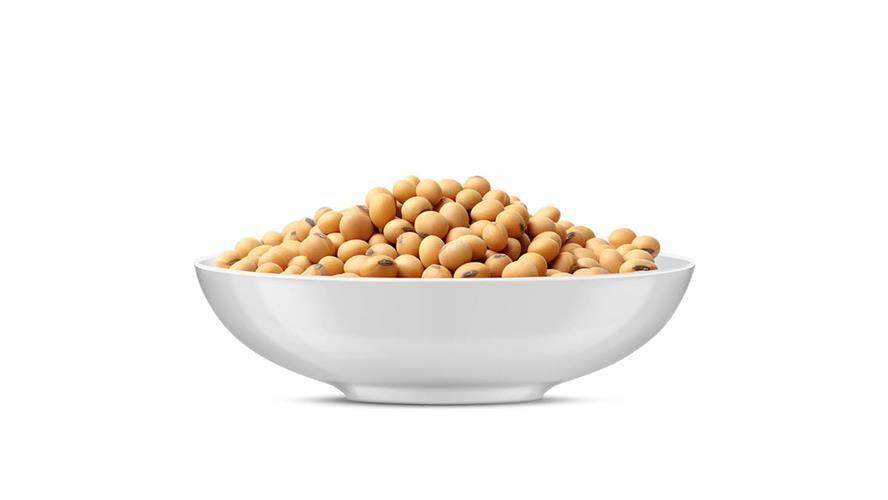 פולי סויה קלויים (אדממה) 100 גרם