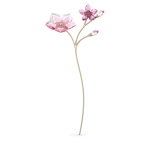 קריסטל  Swarovski קולקציית Garden Tales צורה Cherry Blossom