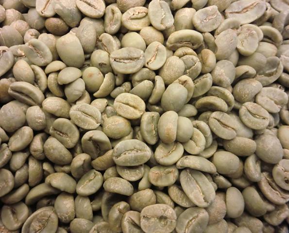 קפה ירוק תערובת Sandalj - Stradivari Blend