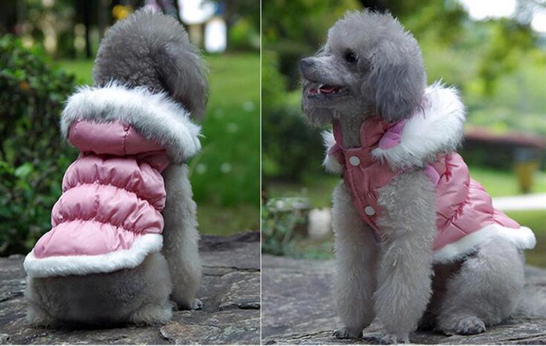 מעיל גשם כיווצים ורוד לכלב