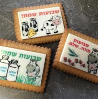 Babies  plastic Stencils Mat for Chocolate