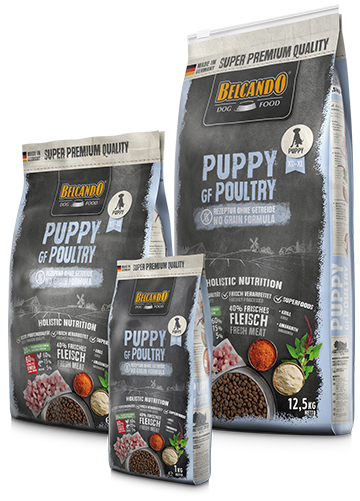 """בלקנדו פאפי ללא דגנים 12.5 ק""""ג מזון יבש לכלבים"""