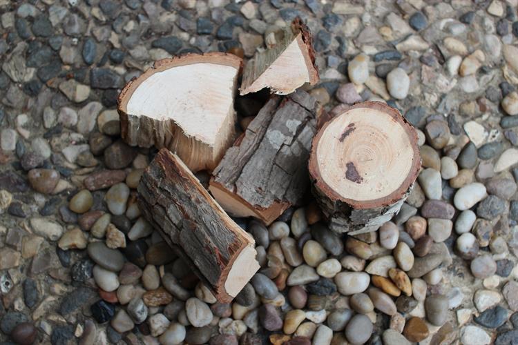 שבבי עץ גדולים לעישון בשר CHUNKS תות עץ